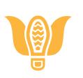 Walk Off Parkinson's Logo Created To Inspire
